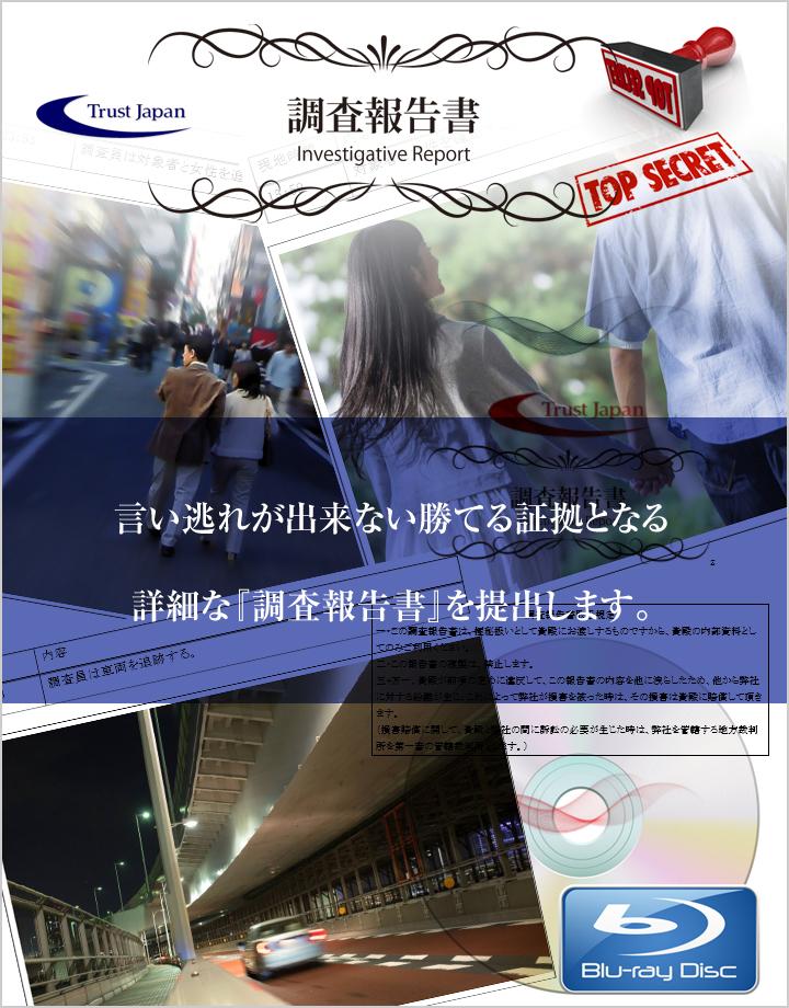 トラストジャパン 調査報告書